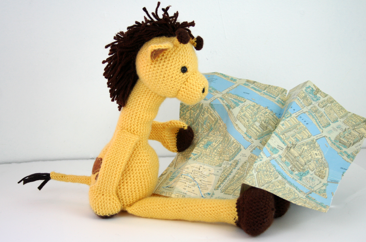 giraffe and map